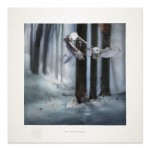 Giclée print - THE MESSENGERS